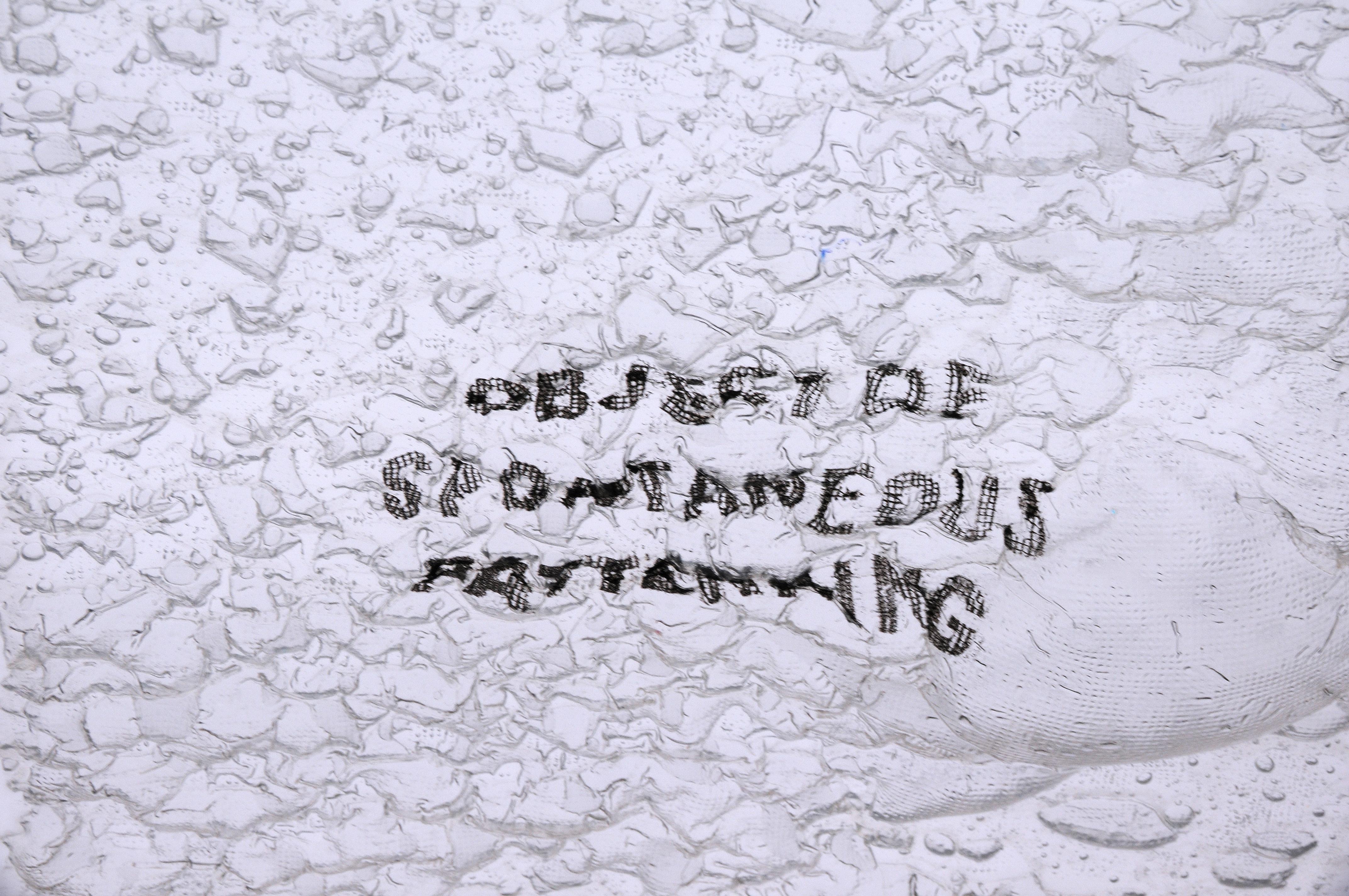 gk-Object_of_Spontaneous_Patterning-03